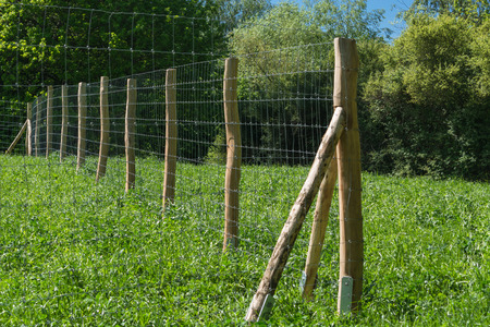 Fence of a pasture for horses or cows Stock Photo