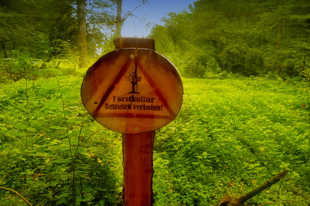 Round wooden sign with inscription in german - Forest culture Enter forbiddenSunbeams in the background. Lens flare desirable. Intentional blur.