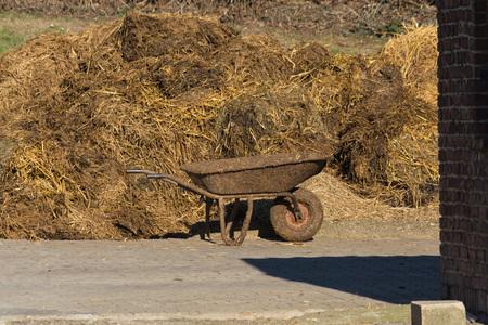 Tas de crottin puant. Tas de fumier sur une maison de ferme en Allemagne Banque d'images