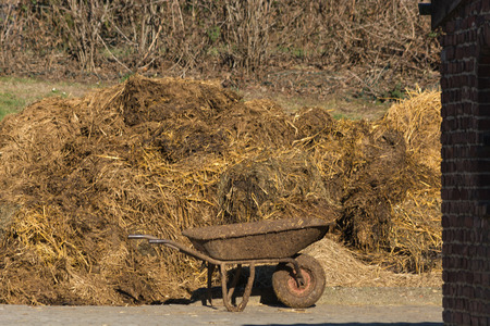 Pile of stinking dung. Manure heap on a farm house in Germany Reklamní fotografie