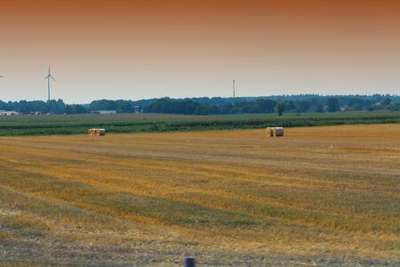 Big hay bales on a field after the harvest