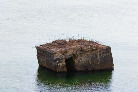 Old German bunker is rinsed out in the sea on the cliffs of the Baltic coast Zdjęcie Seryjne