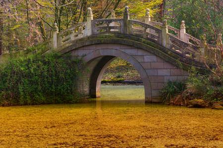 An arch bridge over a pond in an Asian designed garden. Publikacyjne