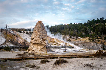 The landscape nature around Mammoth hot springs in Yellowstone national park in Wyoming , United States of America Banque d'images