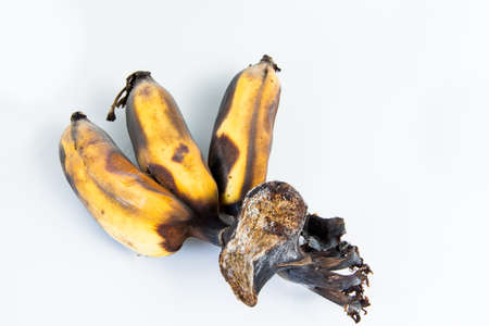 overripe: Leftover and overripe bananas.