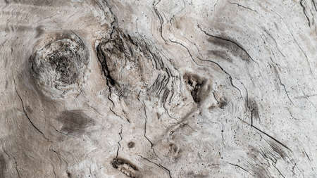 Old and natural wood texture on a beach for background. Stock fotó