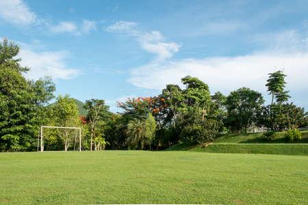 Green grass soccer field.