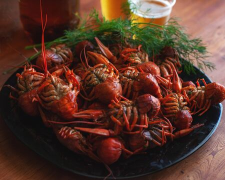 river boiled crayfish, cooked and served on a table for beer close-up
