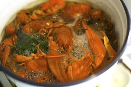 cooking river delicacy boiled crayfish in a pan a delicious beer snack  close-up river meat of arthropods