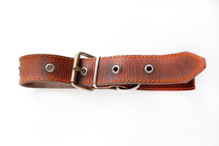 brown leather dog collar on a white background close-up