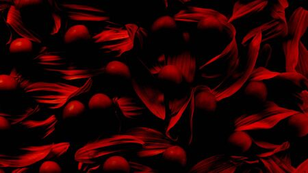 romatic sexy abstract red background of petals and berries