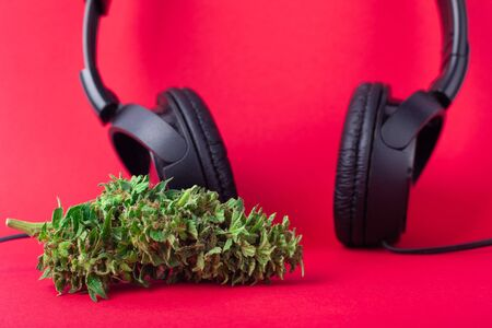 relaxation,chill out when listening to hip-hop music after using marijuana,headphones and cannabis bud on coral background.