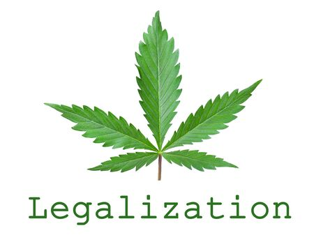 green cannabis leaf and text with copy space.symbol of legalization of medical marijuana.