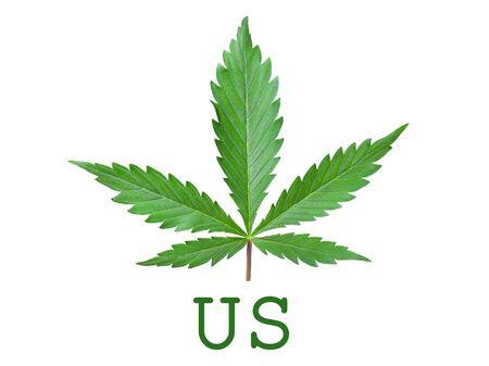 marijuana legalization symbol in usa green cannabis leaf isolated on white background Stock Photo