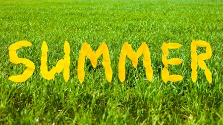 summer concept,green summer grass lawn,lettering yellow text . Stock Photo