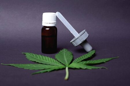 cannabis plant medical oil containing THC and CBD for the treatment of epilepsy and therapy for cancer patients.