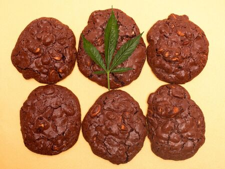 cannabis cookies and green leaf. chocolate peanut cookies with marijuana oil on a yellow background. Stockfoto