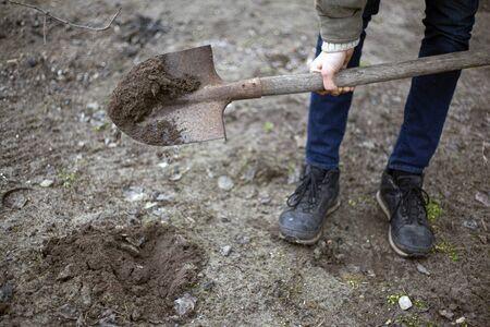 Mann gräbt Boden für das Pflanzen von Bäumen. Gärtner gräbt.