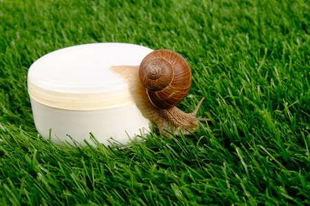beauty, snail mucin cosmetics, skin care cosmetics, body scrub on green grass close-up.