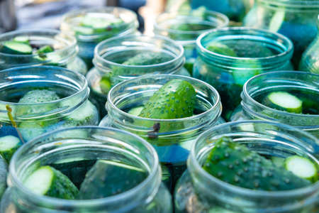 cucumbers in jars, the process of making pickled gherkins.