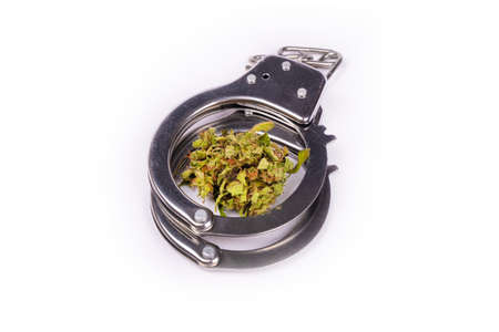 handcuffs and marijuana close-up isolated on white background, cannabis laws. 免版税图像