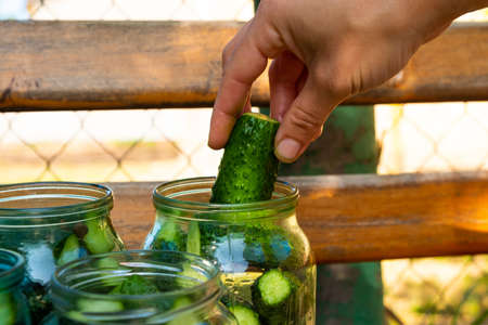 preparation for canning cucumbers for the winter, woman arranges ingredients in a jar close-up.