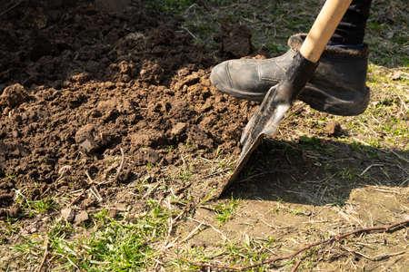 digging up soil in a flowerbed, preparing for planting Standard-Bild
