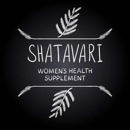 doodled: Shatavari: womens health supplement letters with hand drawn borders, chalk drawings. Illustration