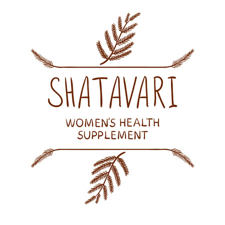 doodled: Shatavari: womens health supplement VECTOR letters with drawn borders, brown on white.