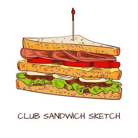 Club sandwich colored sketch. VECTOR sketch. Brown contour lines Stock Illustratie