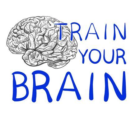 Train je hersenentekst met hand getrokken hersenschets. VECTOR illustratie, blauwe handgeschreven letters.
