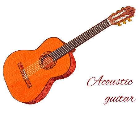 Acoustic guitar isolated on white. Colored. VECTOR Çizim