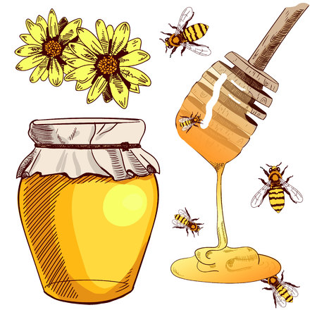 Honey colored sketch.