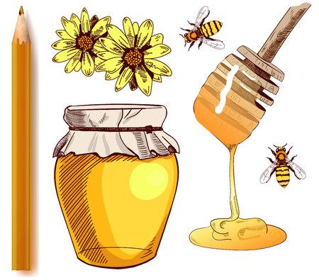 Honey jar hand drawn illustration.