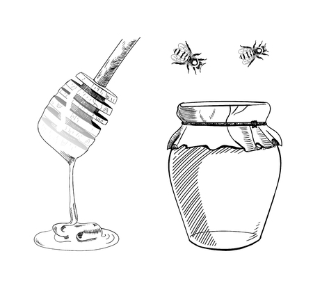 VECTOR set of Honey Sketches, Hand Draw Illustration, Black Line Drawings.