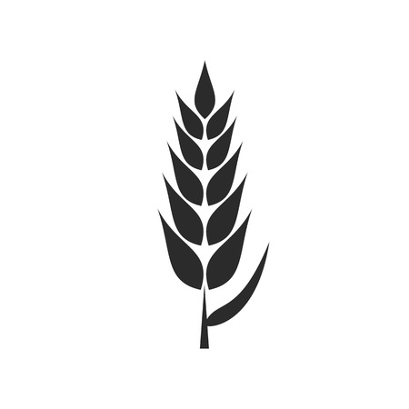 Wheat Plant VECTOR Flat Icon Isolated on White Background. Illustration
