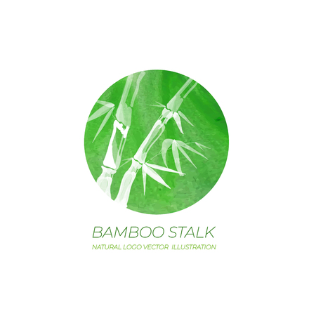 VECTOR Logo Template, Natural Cosmetic Packaging Label, Bamboo Stalk in Green Watercolor Circle. 矢量图像