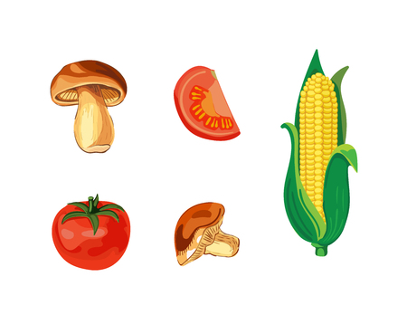 VECTOR Vegetables Collection, Isolated on White Illustrations, Clip Art Vegetables. Illustration