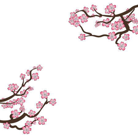 VECTOR Sakura Frame, Blooming Branches Isolated on White Background, Blank Design Template, Cherry Light Pink Flowers. Illustration