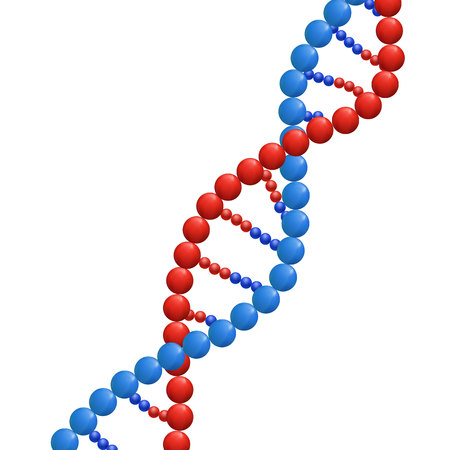 DNA, Biochemistry Concept, VECTOR Illustration Isolated on White Background, Abstract DNA Strand.