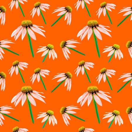 Spring, Summer Season Flowers, Seamless Pattern, VECTOR Sketch Drawings Background. 矢量图像