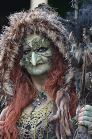 The Goblin Witch