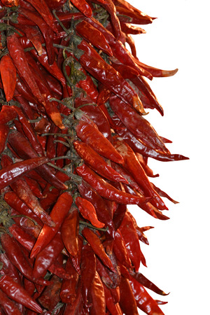 red chilli: Dried Red Chilli Stock Photo