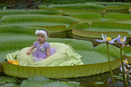 Little Girl On Super Leaf