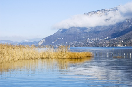 Lake of Annecy with reeds in the foreground photo