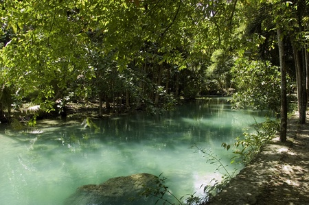 place of interest: Green Kawasan river and foliage at Moalboal, Cebu island, Philippines