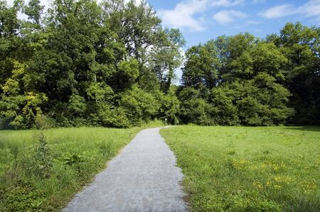 bout: Footpath in green field and forest on blue sky in nature reserve of Doussard, Annecy, France