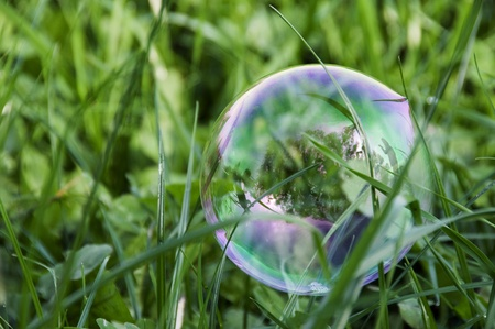 bubble people: Soap bubble and reflection of child on grass