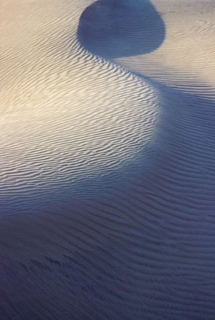 Graphic sandy serpentine on sand dune in Death valley, USA photo