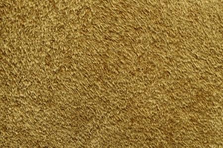 sheep skin: Close view of sheep skin texture of a jacket